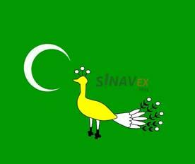 Gazneliler Bayrağı - SINAVEX